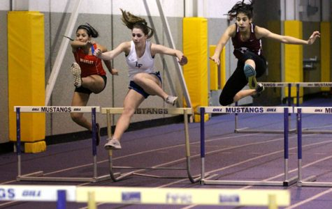 Sequoits Stick it to the Knights