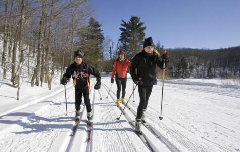 Cross Country Skiing Glides Sequoits in Wintertime Travel