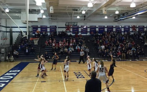 Girls Basketball vs. Saint Viator in Sectional Semifinal