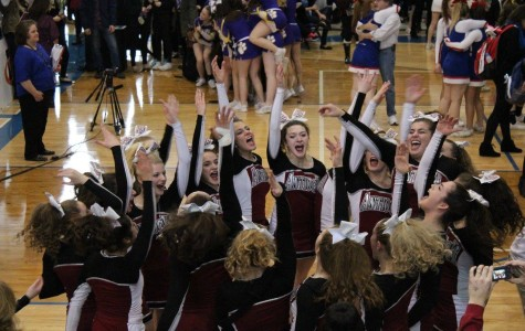 Cheer Makes It To State