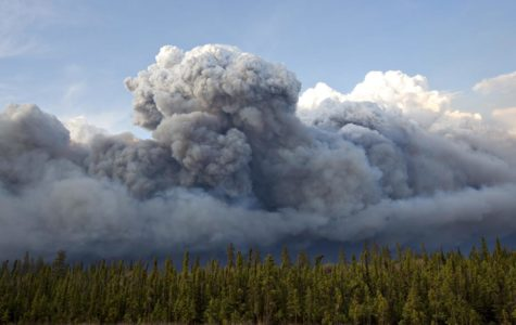 100,000 Canadians Flee from Forest Fire