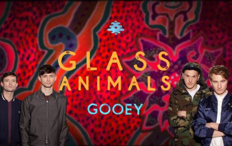 Rising Music: Glass Animals