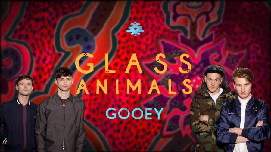 Rising Music: Glass Animals