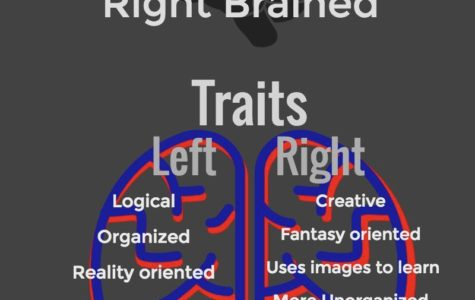 Left Brained or Right Brained?