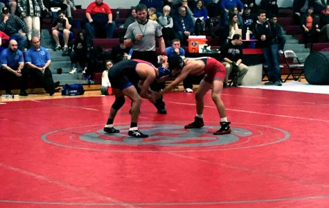 Wrestling won many tough matches to beat their biggest rivals, Lakes.