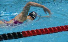 The Star Swimmer