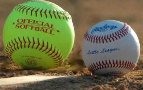 Softball vs. Baseball