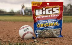 The Power of Sunflower Seeds and Peanuts