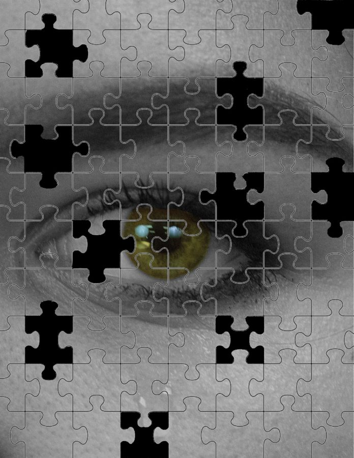 Facing+the+Puzzled+Past