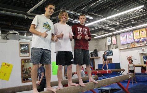 Tom Tom Tries: Gymnastics
