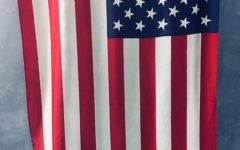 ONLINE EXCLUSIVE: Democracy in America