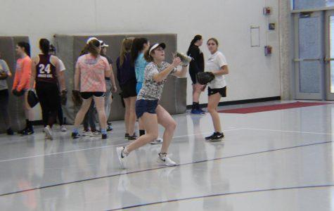 Varsity Softball Profile: Avery Malicki