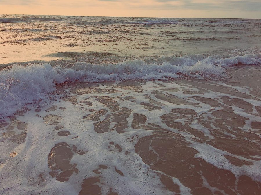 A beach, much similar to where Michelle Von Emster's body was found.