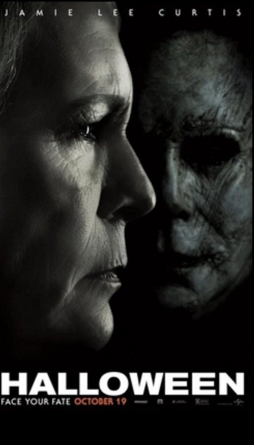 Serial killer, Micheal Myers escapes from his asylum.