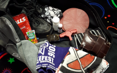 What's in Your Bag: Lynn Michalec