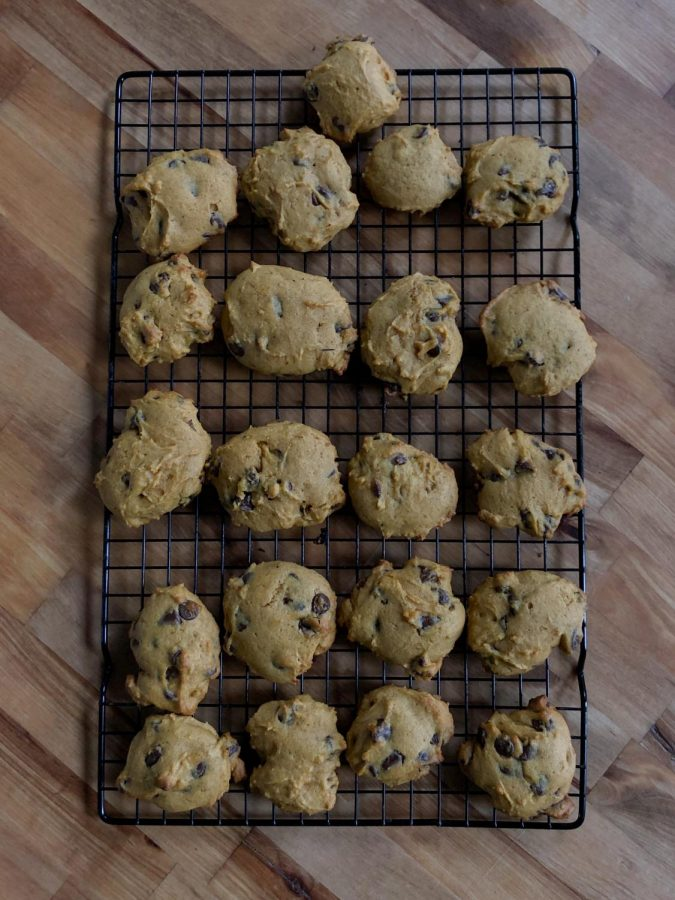While+pumpkin+chocolate+chip+cookies+may+not+look+like+the+average+treat%2C+they+taste+just+as+good.