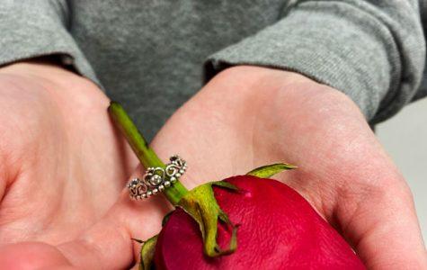 Picking Petals: Women Tell All